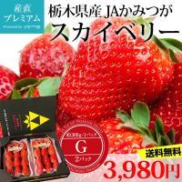 いちご スカイベリー G 約350g 2パック 栃木産 大粒 イチゴ 送料無料