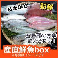 *ご注意下さい ギフト梱包不可。メッセージ・熨斗不可。処理は下処理のみ可。  獲れたての旬の鮮魚を詰...