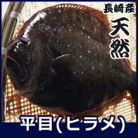 内容:天然ヒラメ 3.3kg前後サイズ 計1尾   ※サイズの若干の前後につきましてはご了承下さい ...