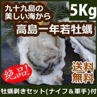 【只今20%OFF】高島一年若牡蠣(殻付き)計5kg(50個前後) もちろん生食OK! 送料無料