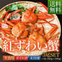 鳥取県 境港産 ボイル 紅ずわい蟹 A級 3尾SET(1尾300~390g)【紅ずわい300A3尾】