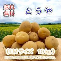 減農薬栽培 じゃがいも < とうや >  北海道産 じゃがいも  ( LM規格  10 kg)≪ 農家直送 ≫  ようてい山麓ルスツ産  じゃがいも