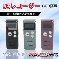 【仕様】 サイズ(約):8 x 3.5 x 1.2cm 重量:194g約 サポート:MP3/WAV ...