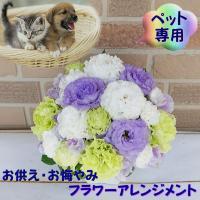 ペット専用 お供え、お悔やみのフラワーアレンジメント 翌日お届けデザイナーにおまかせ3780円