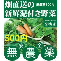 有機野菜セット宅配 30年間無農薬・無化学肥料 有機栽培わけあり旬野菜。有機肥料でコツコツと土作りさ...