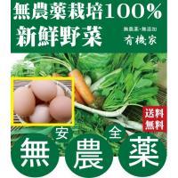 特鶏卵10個セットと無農薬野菜詰め合わせ 旬の無農薬100%野菜セット