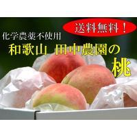 ◆和歌山の田中さんが栽培した、化学合成農薬を一切使わず栽培した桃です。除草剤・化学合成農薬・化学肥料...
