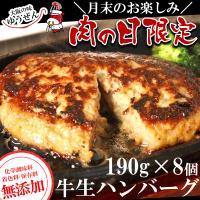 ハンバーグ \肉の日限定/ 牛 100% 無添加 牛生ハンバーグ BIGハンバーグ(190g×4個×2袋)