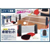 ポータブル卓球セット HAC1153 テーブルピンポン 卓球 ピンポン お正月 こどもの日 プレゼント 机で卓球