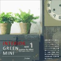 【インテリアグリーン ミニポット】光触媒 観葉植物 消臭 抗菌 防汚 浄化 空気清浄 シックハウス