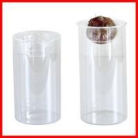 雑貨屋フリーのおすすめセット商品  球根を水栽培できるガラス花瓶のショートとロングの2個セットです。...