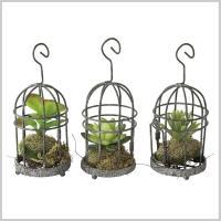 造花 インテリア 観葉植物 イミテーション 植物 サボテン DECOR IMITATION MINI CACTUS CAGE アソート