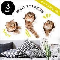 ◆材質◆ PVC  ◆サイズ◆ シール全体:長さ60cm×幅40cm 猫1:横25cm×縦24cm ...