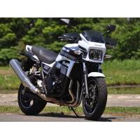 【適合車種】ZRX1200 DAEG(ダエグ) 【適合年式】09年〜 【備考】※フロントブレーキホー...