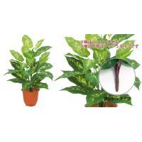 (造花 フェイクグリーン 人工観葉植物) (屋外OK)エバーグリーンディーフェンバキアブッシュ(ウォータープルーフ)(GL96)