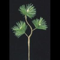 お正月アレンジにおすすめの松の造花です。しめ縄飾りや小さなアレンジにも使えます。  ■29x12cm...