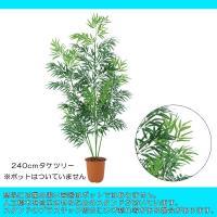 (人工観葉植物 ディスプレイ)240cmタケツリー(5/1445)(DF34/31)