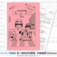 この商品ページは  【 第一種免許問題集 翻訳中国語版 】  の販売ページです。    『ズバリ!問...