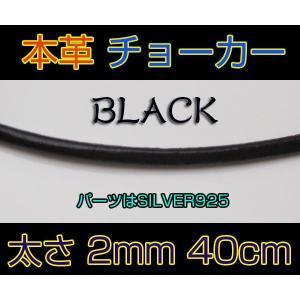 レザーチョーカー黒2mm40cm/本革(メイン)|0001pppcom