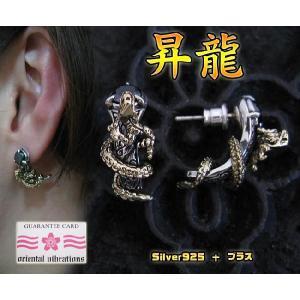 【OV】黄金龍のピアス(オニキス)・ブラス/ドラゴン和柄|0001pppcom