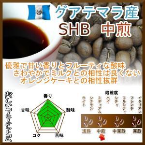 コーヒー豆 グアテマラ コーヒー SHB 中煎 最高級グレード 500g グァテマラ 珈琲 50杯分...