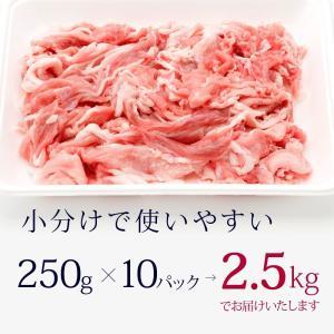 送料無料 国産豚 小間切れ  2.5kg入 メガ盛り