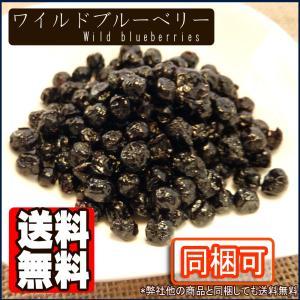 ブルーベリー(ワイルド種)1kg【送料無料】