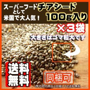 チアシード100g×3【3個セット】【送料無料】