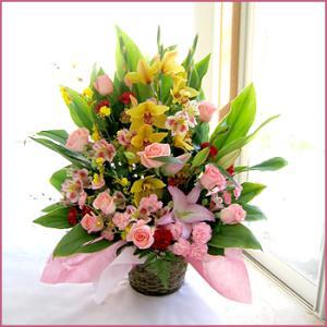 フラワーアレンジメント(お祝いアレンジA) お誕生日 出産祝い 結婚記念日 お見舞い 開店祝い|087-ie