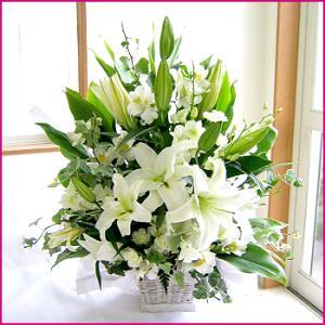フラワーアレンジメント(ホワイトリリー) お誕生日 出産祝い 結婚記念日 お見舞い 開店祝い 087-ie