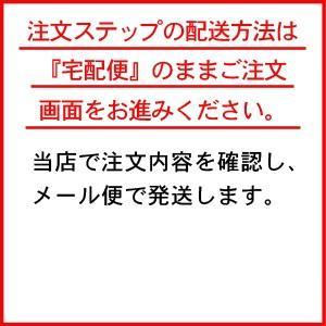 メール便/ヒガシフーズカレー・ルー中辛150g×3袋セット/郵便受けへの投函です|09shop|03