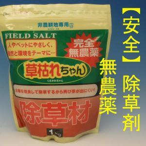 草枯れちゃん 安全無農薬除草剤