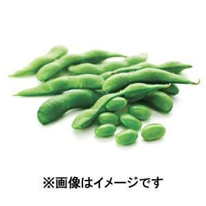 塩あじえだ豆 10kg【訳あり】【数量限定】500g 20個セット 業務用 冷凍食品 送料無料 野菜 アウトレット ニッスイ 1001000