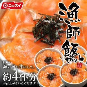 サーモン丼セット 海鮮丼 約4杯分 特製たれ・のり付 新鮮 ...