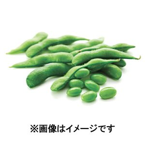 ポイント消化 塩味えだ豆【訳あり】【数量限定】500g 業務用 冷凍食品 日本水産 ニッスイ アウトレット 1001000
