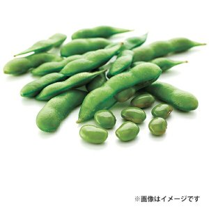 ポイント消化 塩味茶豆【訳あり】【数量限定】500g 業務用 冷凍食品 ニッスイ アウトレット 1001000