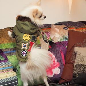 犬服 犬 服 好き 名入れ 名前入り 名前入れ プレゼント ギフト かわいい コート 長袖 冬服 お...