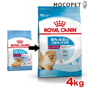 ロイヤルカナン インドア ライフ ジュニア 4kg 室内で生活し、外出が少ない小型犬 子犬用 JAN:3182550849593 #50677