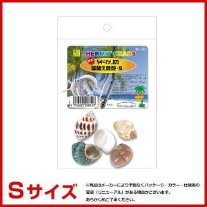 三晃商会 オカヤドカリの宿替え貝殻 S #w-1...の商品画像