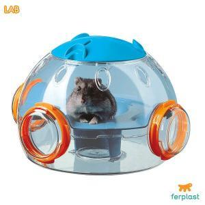 【最大55%オフ!猫の月限定セール☆】ファンタジーワールド LAB #w-132242|1096dog