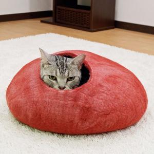 大好きなニャンコを喜ばせたい! 愛猫に贈る「とっておきのプレゼント」特集
