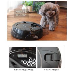 自動給餌器 オートペットフィーダー 6食分 トレイ ディッシュタイプ コスゲオリジナル ホワイト ブラック ドライ・ウェット両用 犬 猫 自動餌やり機|1096dog|06