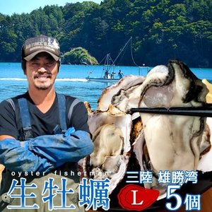 生牡蠣 殻付き L 5個 生食用 生ガキ 宮城県産 漁師直送 格安生牡蠣お取り寄せ バーベキュー|1123