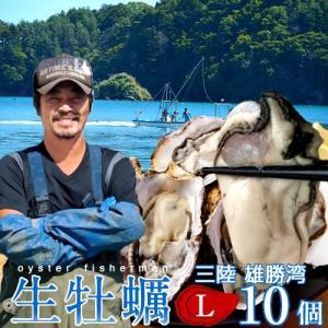 生牡蠣 殻付き L 10個 生食用 生ガキ 宮城県産 漁師直送 格安生牡蠣お取り寄せ バーベキュー|1123