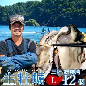 生牡蠣 殻付き L 12個 生食用 生ガキ 宮城県産 漁師直送 格安生牡蠣お取り寄せ バーベキュー|1123
