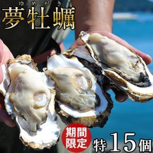 生牡蠣 殻付き 特大 夢牡蠣 15個 生食用 生ガキ 宮城県産 大粒生牡蠣 特大 送料無料|1123