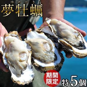 生牡蠣 殻付き 特大 夢牡蠣 5個 生食用 生ガキ 大粒生牡蠣 特大 バーベキュー|1123