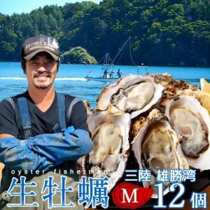 生牡蠣 殻付き M 12個 生食用 生ガキ 宮城県産 漁師直送 格安生牡蠣お取り寄せ バーベキュー|1123