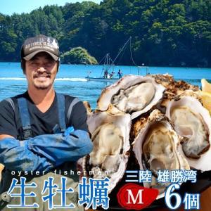 生牡蠣 殻付き M 6個 生食用 生ガキ 宮城県産 漁師直送 格安生牡蠣お取り寄せ バーベキュー|1123