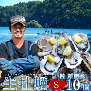 生牡蠣 殻付き S 10個 生食用 生ガキ 宮城県産 漁師直送 格安生牡蠣お取り寄せ バーベキュー|1123